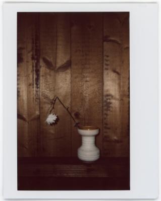 Polaroids007_miriambaans